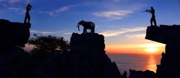 Man som skjuter en elefant på berget Arkivfoto