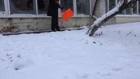 Man som skyfflar snö från fönsterfönsterbräda och vandringsledet nära växthus 4K stock video