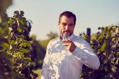 Man som smakar vitt vin royaltyfria foton