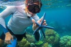 Man som snorklar i blått vatten med sjöstjärnan korallrev som snorkeling Blå sjöstjärna för snorkelhåll Royaltyfri Foto