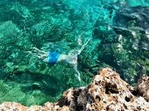 Man som snorklar i Cypern arkivbilder