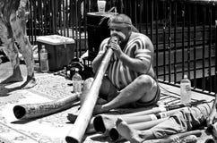 Man som spelar didgeridooen fotografering för bildbyråer