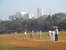 Man som spelar syrsan på gräset av stadion i Mumbai Indien Royaltyfria Bilder