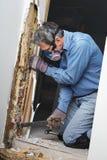 Man som tar bort skadat trä för termit från väggen arkivbild
