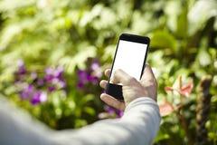 Man som tar fotobilden vid mobiltelefonen i en loppresa, gröna växter i en parkera Fokuserat på telefonskärmen Utrymme för tom sk royaltyfria foton