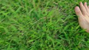 Man som trycker på grönt gräs som slappt rakt till växer från vänstert stock video