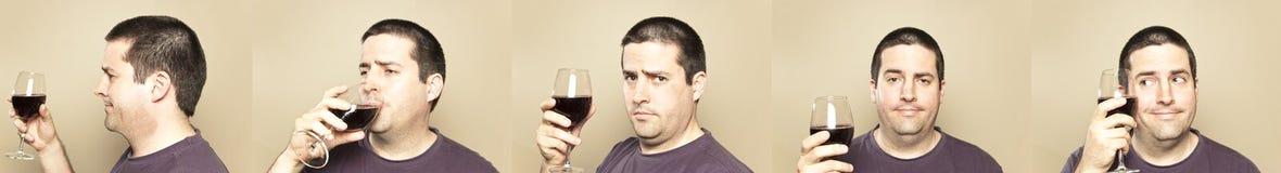 Man som tycker om ett exponeringsglas av wine Fotografering för Bildbyråer