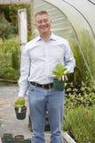Man som väljer växter på den trädgårds- mitten Royaltyfria Bilder