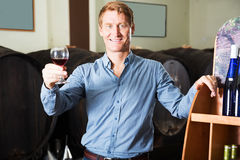 Man sommelier in wine cellar Stock Image