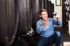 Man sommelier in wine cellar Stock Photos