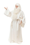 Man in sorcerer costume. On white background Royalty Free Stock Image