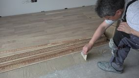 Man with spatula apply wood adhesive on concrete floor. Oak floor board laying in living room. Static closeup shot stock video
