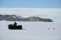 A man on a special car explores Antarctic birds. stock photography