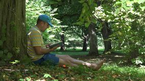 Man spent his holiday time reading novel book under old tree in park. 4K. Man spent his holiday time reading novel book under old tree in park. Static shot. 4K stock footage
