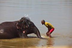 Man Splashing Water on Face of Asian Elephant Stock Photography