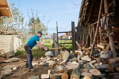Man splitting wood. Man splitting beech wood logs for firewood Royalty Free Stock Image