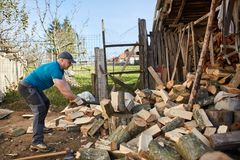 Man splitting wood. Man splitting beech wood logs for firewood Royalty Free Stock Photos
