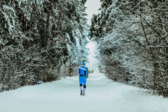 Man in sportswear running through alley in winter forest Royalty Free Stock Photography