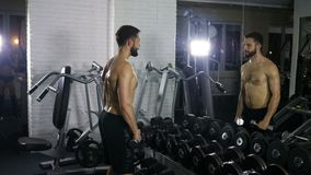 A man of a sporty physique trains the muscles of both hands using a dumbbell in the gym opposite looking in the mirror. Next to, side view, back muscles, coach stock footage