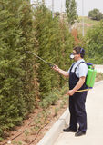 Man spraying insects- pest control Stock Photos