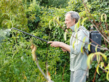Man spraying of pesticide on country garden. In summer Stock Photography