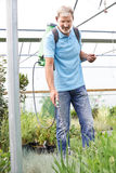 Man Spraying Plants In Polytunnel At Garden Center Stock Photography