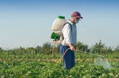 Man spraying vegetables stock photos