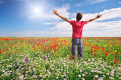 Man in spring meadow Stock Photography