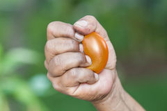 A man squeezing a stress ball Stock Photo