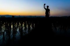 Man ställningen och ta kameran på risfältet Fotografering för Bildbyråer
