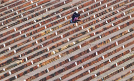 Man on stairs of entrance of Jama Masjid Mosque, old Delhi, Indi Stock Image