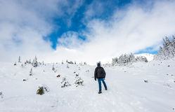 A man stand facing the mountain on a path cover with snow in paradise area,scenic view of mt Rainier National park,Washington,USA. Royalty Free Stock Photography