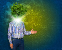 Man stand with green tree instead his head Royalty Free Stock Photography