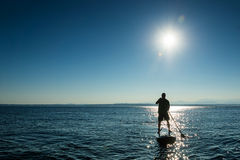 Man on Stand Up Paddle Board Royalty Free Stock Photography