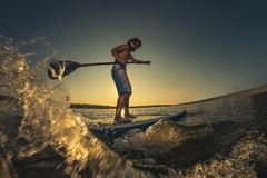 Man stand up paddle boarding. At dusk on a flat warm quiet sea royalty free stock photography