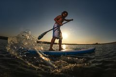 Man stand up paddle boarding. At dusk on a flat warm quiet sea royalty free stock image