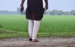 Man standing around an agricultural field stock photo. A man is standing around a paddy field wearing stylish festival punjabi dress unique stock photograph stock image
