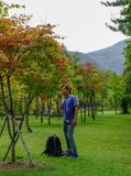 A man standing at autumn park royalty free stock photo