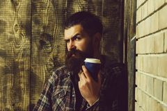 Man standing with blue plastic cup in corner. Man or or brutal caucasian hipster with long beard and moustache standing with blue plastic cup in corner on wooden royalty free stock photo