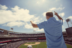 Man standing and cheering at a baseball game. An excited male baseball fan standing and cheering after an exciting play during a baseball game Stock Image