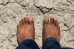 Man standing on a dry cracked earth Stock Images