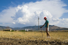 Man standing on Dry crop Stock Photos