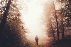 Man standing in surreal forest with red fog royalty free stock photography