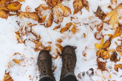 Man standing on the fallen foliage on the snowy ground Royalty Free Stock Photos