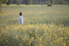 Man standing in field Stock Photography