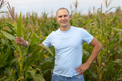 Man standing in field royalty free stock images