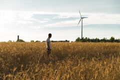 A man standing in a field looking at a wind generator. A man standing in a wheat field looking at a wind generator Stock Images