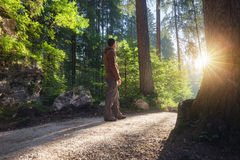 Man standing at the forest path. Man standing at the sunny forest path royalty free stock photos