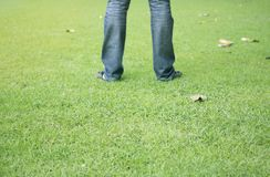 Man standing on fresh green grass with sunlight. Focus on grass Royalty Free Stock Photo