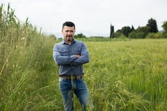 Man standing in green field Royalty Free Stock Image
